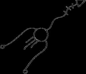 figure-direzione-16-5